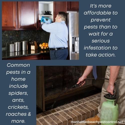 residential-pest-exterminator-Manhattan-Beach-90266